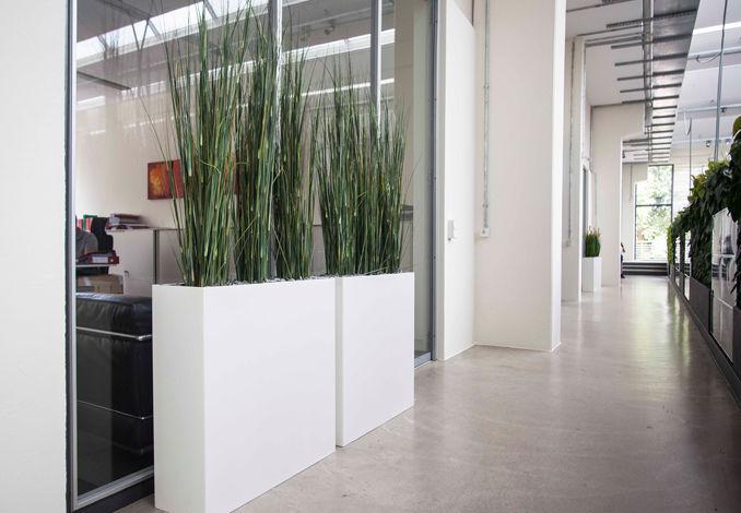 jardinera de piedra rectangular moderna para espacio pblico sansevieria artaqua