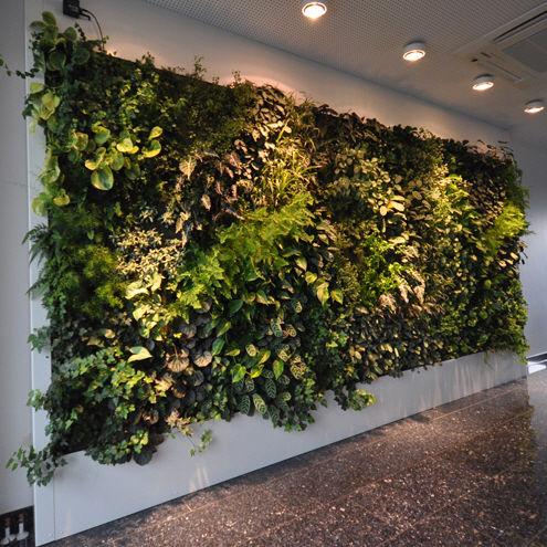 fachada vegetal de interior vegetal livepanel vertical garden jardin vertical