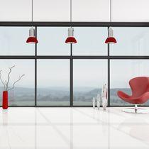 Muro cortina de vidrio estructural / de aluminio
