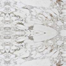 Baldosa de interior / de pared / para pavimento / de mármol