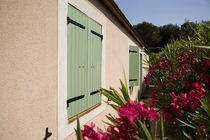 Contraventanas abatibles / de aluminio / para ventanas / de corte térmico
