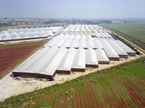 Plancha de tejado de policarbonato / translúcida / ondulada