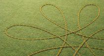 Alfombra moderna / de flores / de lana / de fieltro