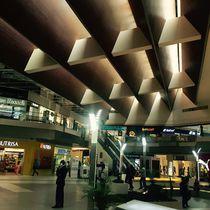 Panel de material compuesto de construcción / estructural / de madera compuesta / para techo