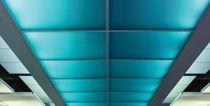 Panel led para techo de cielo / para techos luminosos