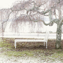 Tumbona de diseño escandinavo / de madera / para espacio público