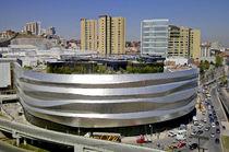 Revestimiento de fachada de acero inoxidable / reflectante / de panel