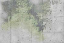 Papeles pintados modernos / de vinilo / con motivos de la naturaleza / aspecto hormigón