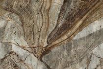 Papeles pintados modernos / de vinilo / con motivos de la naturaleza / aspecto piedra