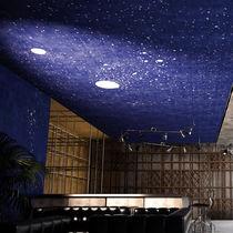 Falso techo de vinilo / tipo panel / decorativo