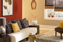 Pintura para muro / interior / de efectos
