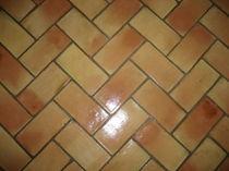 Baldosa de interior / para suelo / de terracota / pulida