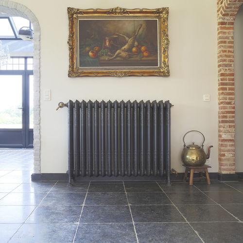 radiador de agua caliente / de hierro fundido / moderno / horizontal