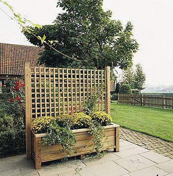 enrejado para muro vegetal / de pino
