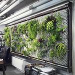 muro vegetal de interior / con estructura modular