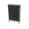 radiador de agua caliente / de hierro fundido / clásico / de libre instalación
