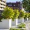 jardinera de hormigón / cuadrada / moderna / para espacio público