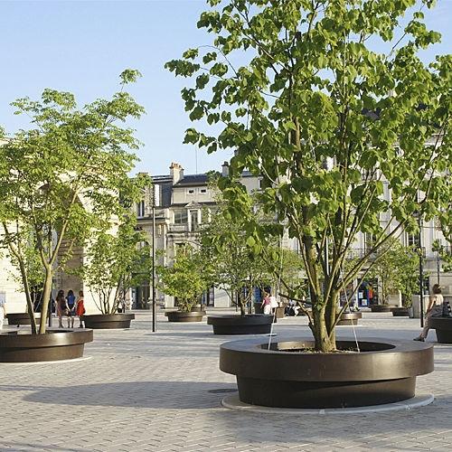 Los rboles en macetas gigantes ponen verde el centro de Dijon