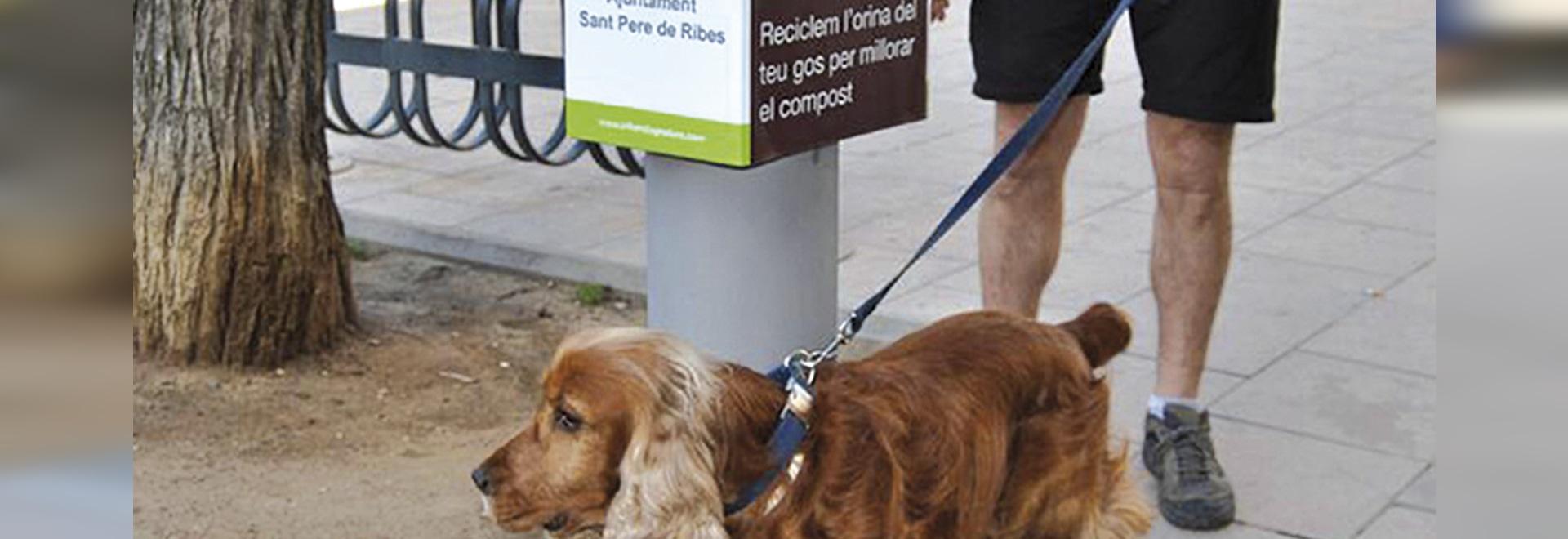 El colector urbano de la orina del perro instaló
