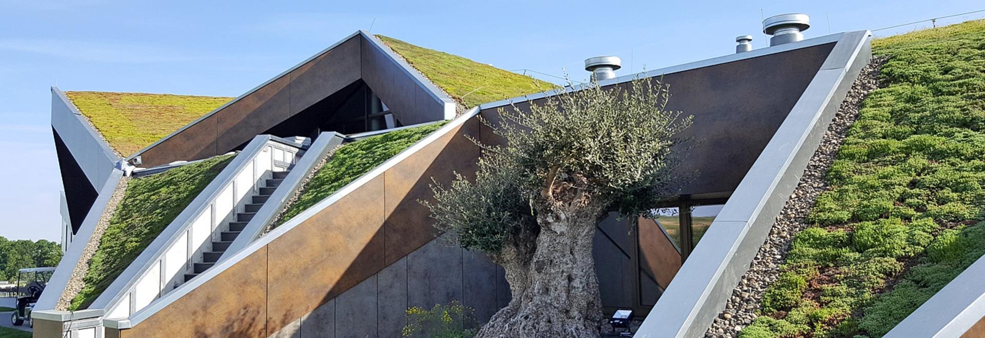 Crear un tejado verde en un tejado echado no es un problema proporcionó las características especiales del tejado se toma en la consideración.