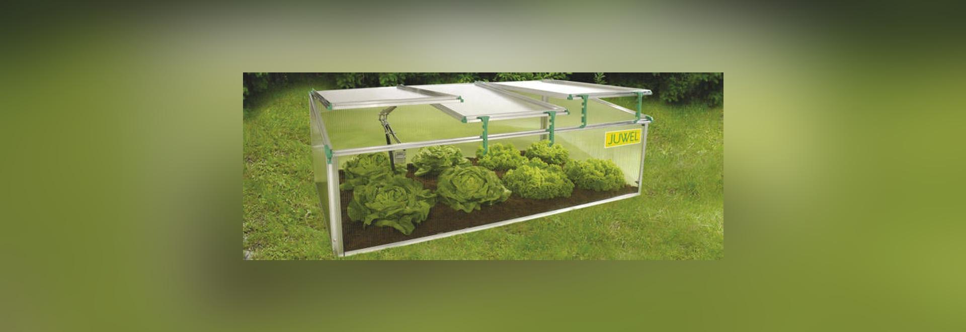 NUEVO: invernadero del policarbonato de Juwel - Juwel