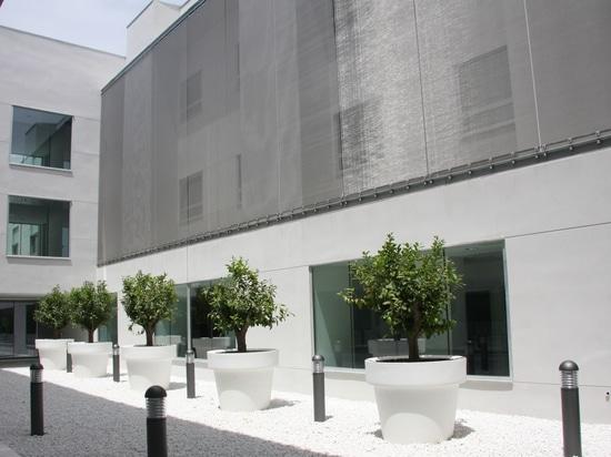 Clinica Santa Angela de la Cruz