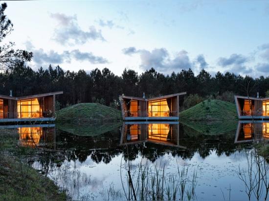 Chozas sostenibles del eco empleadas los zancos en un bosque francés idílico del pino