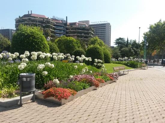 Plaza Reina MªCristina