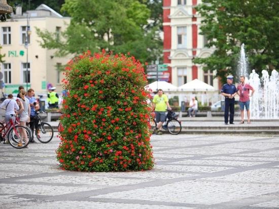 Zielona Góra, Polonia