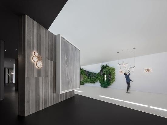 Encuentre un haz de luz en diseño