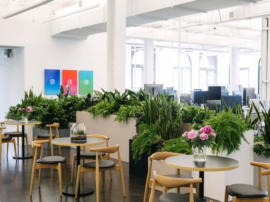 Las nuevas oficinas de Manhattan de Instagram de los socios de Gehry proporcionan oportunidades amplias de la foto
