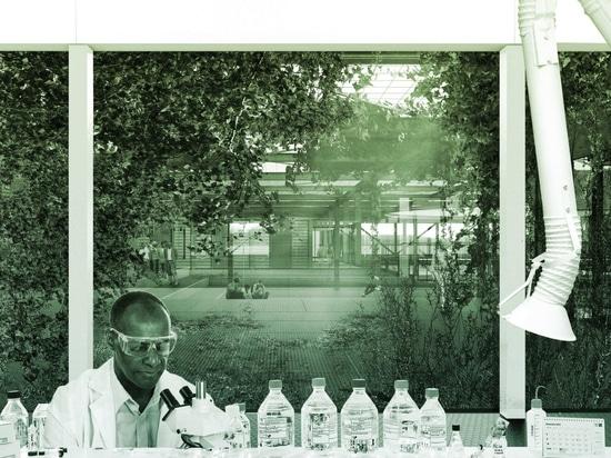 Sean Cassidy propone la primera cámara acorazada de la semilla en la África subsahariana para el sitio en el monte Kilimanjaro