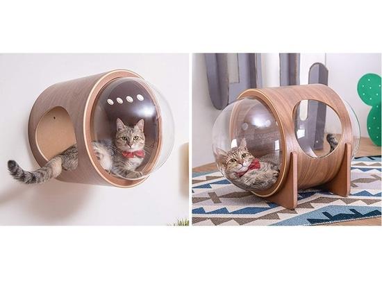 La nave espacial ahora inspiró la cosa de Cat Beds Are A