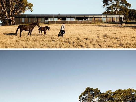 Cubiertas laterales de madera ennegrecidas esta casa moderna de la granja en Australia rural