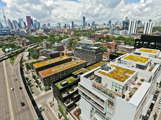 En BAU 2019, ZinCo demostrará cómo construir los tejados verdes innovadores. Nuestro ejemplo muestra las propiedades horizontales de la ciudad del río, Toronto, Canadá.