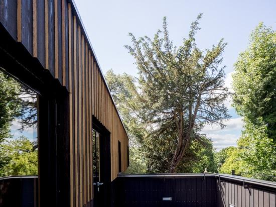 Teatro de aire abierto de Regent's Park/Reed Watts Architects