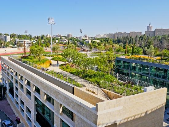 """Jardín en el tejado del """"el campus nacional para la arqueología de Israel """""""