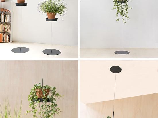 La colección del soporte de la planta de Teepots de Mauro Canfori
