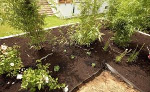 Plantaciones y accesorios
