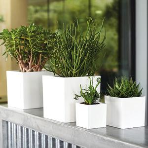 maceta de jardín de polipropileno / rectangular / para uso residencial