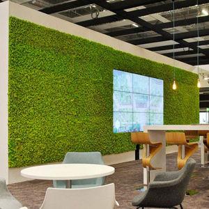muro vegetal biológico
