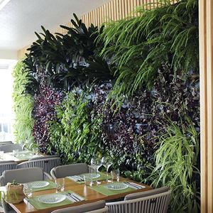 muro vegetal estabilizado