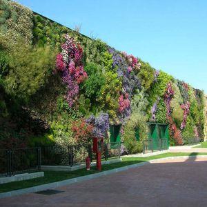 muro vegetal de plantas naturales