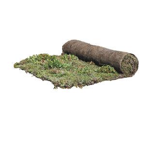 tapiz vegetale para azotea
