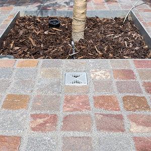 sistema de riego para árbol