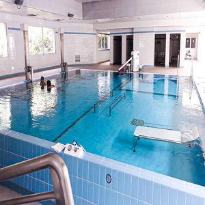 piscina sobre suelo / enterrada / viniléster / para el sector servicios