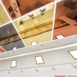 espejo de techo / contemporáneo / para el sector servicios