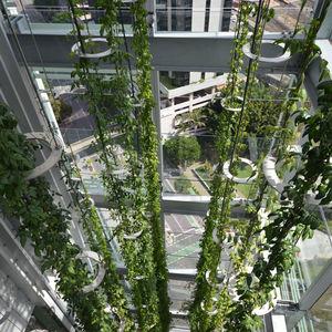 sistema de fijación acero inoxidable / para fachada ventilada / para exteriores / para vidrio