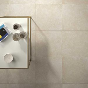 baldosas de baño / de pared / para suelos / de gres porcelánico