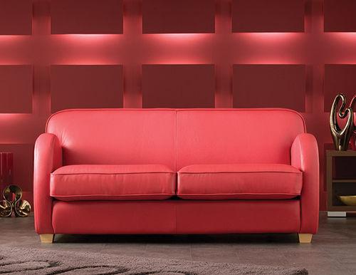 sofá compacto / contemporáneo / de cuero / 2 plazas